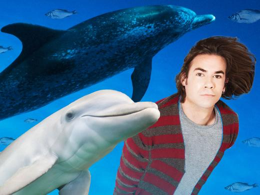 Jerry the Dolphin 1