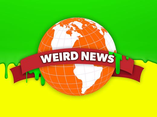 Matt Bennett Weird News of the Week 1