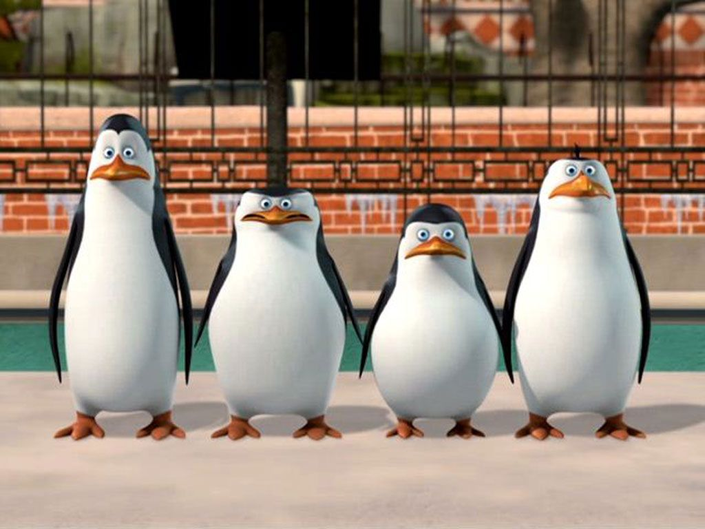 Penguin Army|Don't let those faces fool you! Led by the fearless Skipper, these waddling soldiers are experts at protecting their zoo family and habitat.